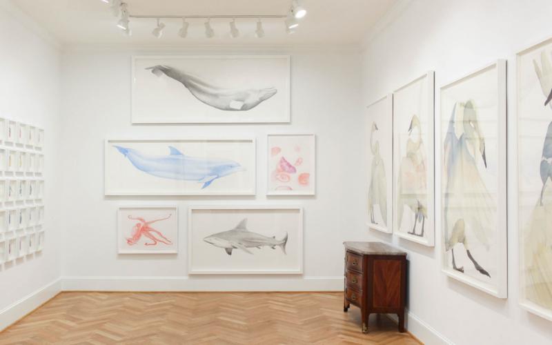 Spalding Nix Gallery art hanging on white walls