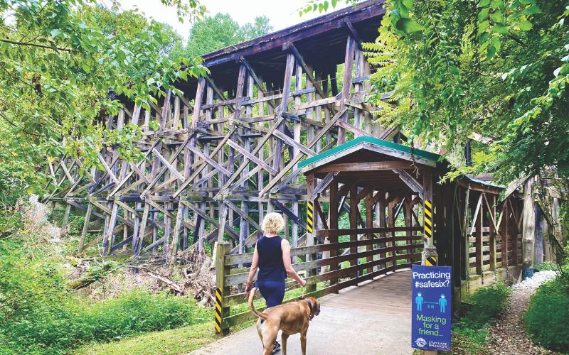 Girl walking dog on beltline trail